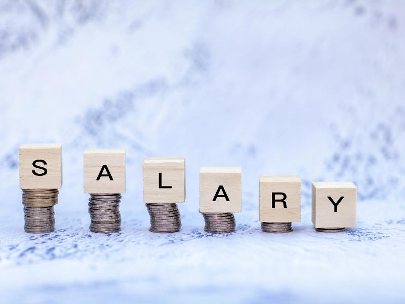 Le salaire minimum garanti : promesse de valeur ?